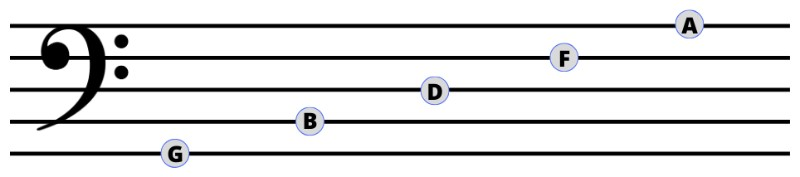 Bass Clef Notes Lines