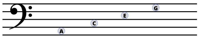 Bass Clef Notes Spaces